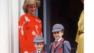 Lady Diana, Prinz Harry und Prinz William