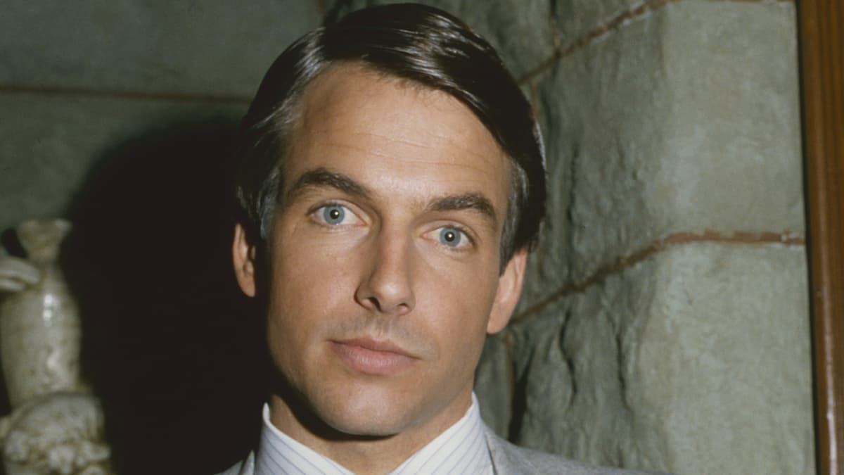 Mark Harmon früher: So sah der ehemalige Sexiest Man Alive jung aus