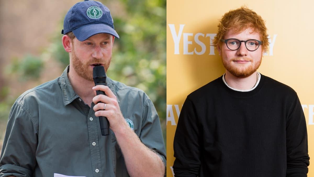 Prinz Harry und Ed Sheeran machen gemeinsame Sache