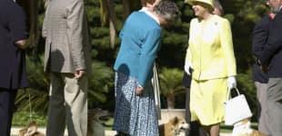 Königin Elisabeth II. liebt Corgis