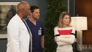 """Grey's Anatomy"" ""Richard"" ""Alex"" und ""Meredith"" staffel 15 finale"