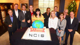 """""""Navy CIS"""": Cast"""