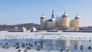 """Schloss Moritzburg """"Drei Haselnüsse für Aschenbrödel"""""""