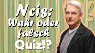 NCIS: Wahr oder Falsch Quiz