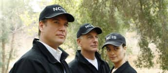 Michael Weatherly, Mark Harmon und Cote de Pablo: Die NCIS-Stars