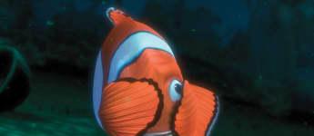 """""""Findet Nemo"""" aus dem Jahr 2003"""