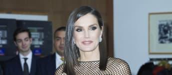 Königin Letizia Kleid Journalisten-Preise