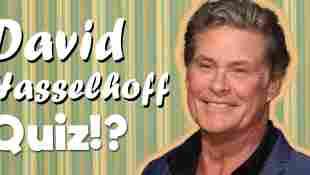 david hasselhoff quiz