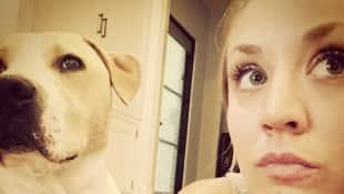 Kaley Cuoco und ihr Hund Norman sind seit sieben Jahren unzertrennlich