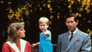 Lady Diana, Prinz William und Prinz Charles