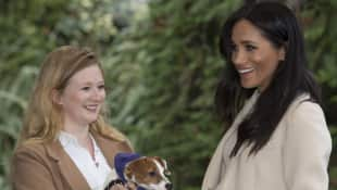 Duchess Meghan at the Mayhew Animal Charity