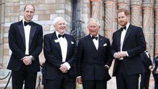 Prinz William, David Attenborough, Prinz Charles, Prinz Harry