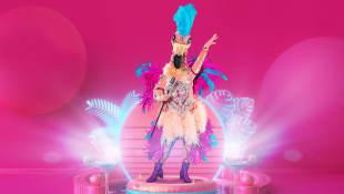 the masked singer der flamingo