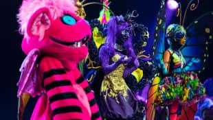 """""""The Masked Singer"""" auf ProSieben – wer ist raus?"""