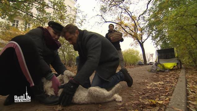 """""""Paula"""" und ihr Hund """"Alfred"""""""