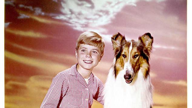 "Jon Provost and ""Lassie"" in 1954 TV show"