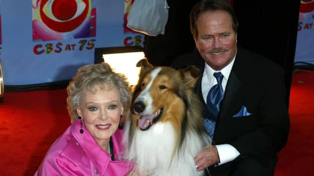 """June Lockhart, Lassie und Jon Provost spielten gemeinsam in der Serie """"Lassie"""""""