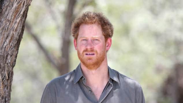 Prinz Harry reist gerne nach Afrika dort fühlt er sich zuhause
