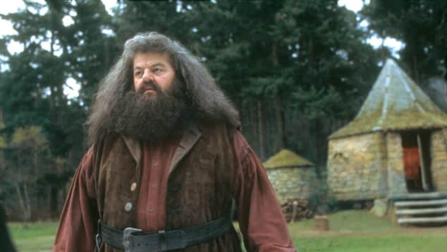 "Robbie Coltrane played ""Rubeus Hagrid"" in the ""Harry Potter"" films"
