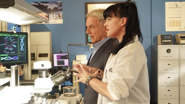 Gibbs Mark Harmon Pauley Perrette Abby Navy CIS NCIS