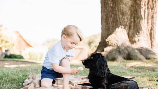 Prinz George und Hund Lupo
