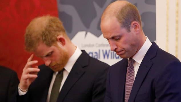 Prinz Harry und Prinz William 2018