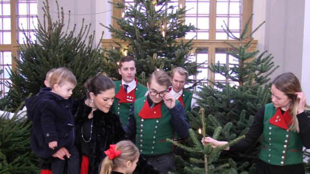 Prinzessin Victoria nimmt mit Prinzessin Estelle und Prinz Oscar ihre Weihnachtsbäume entgegen