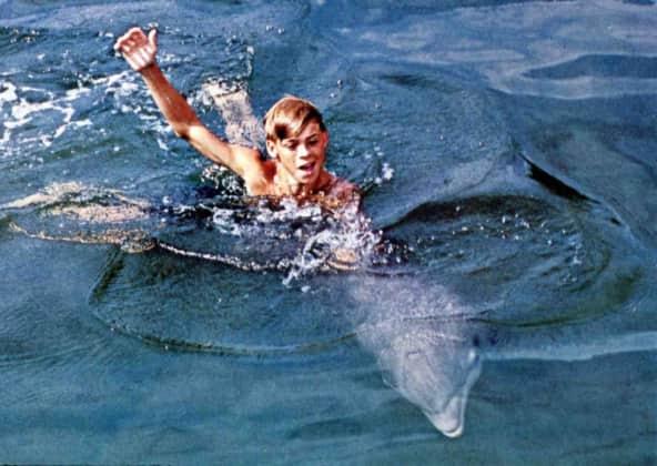 Flipper Darsteller