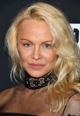 Pamela Anderson OP