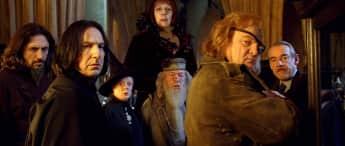 """Die Lehrer aus """"Harry Potter"""""""