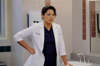 """Sara Ramirez wird """"Grey's Anatomy"""" nach 10 Staffeln verlassen"""