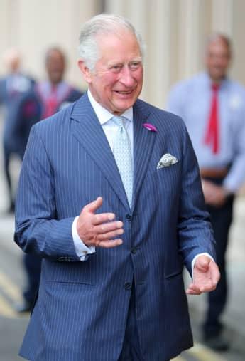 Prinz Charles hat noch nie so glücklich ausgesehen, wieder in der Arbeit zu sein