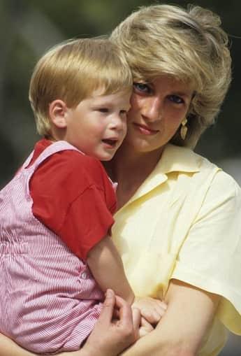 Princess Diana Prince Harry