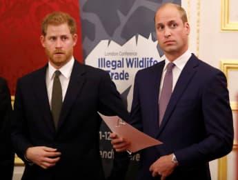 Prinz Harry Prinz William Trennung
