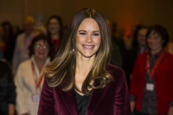 Prinzessin Sofia Schweden Samt