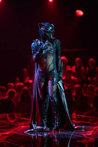 Panther Masked Singer Stefanie Hertel