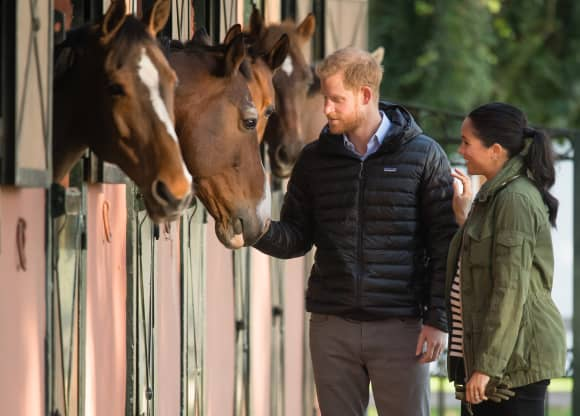 Harry and Meghan petting the horses