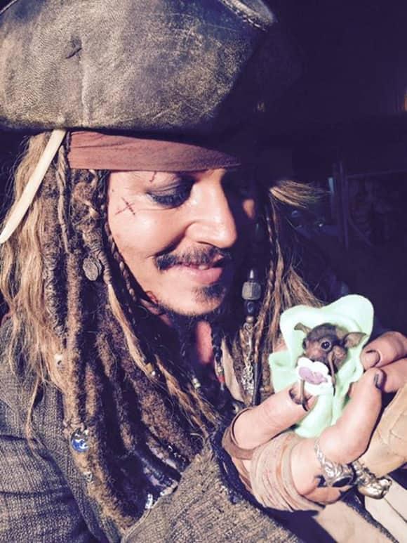 Johnny Depp freut sich sichtlich, die kleine Fledermaus auf dem Arm zu halten