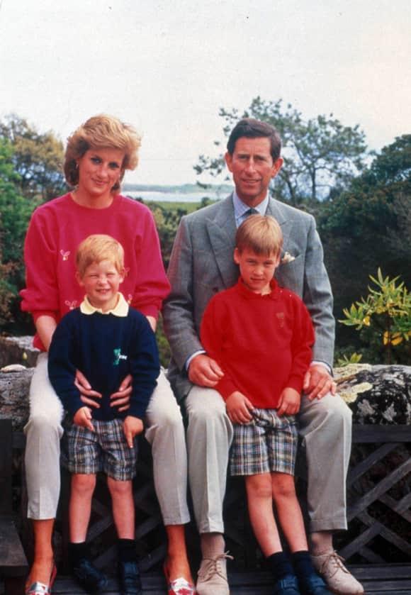 Princess Diana, Prince Harry, Prince William and Prince Charles