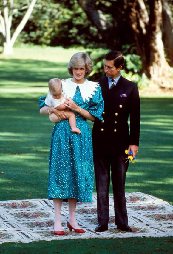Prince William Princess Diana Prince Charles