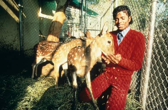 Michael Jackson im Jahr 1985