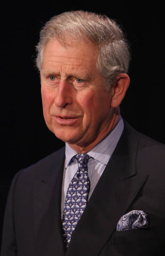 Prince Charles in 2009