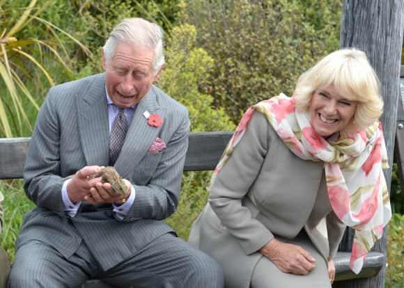 Prince Charles Camilla New Zealand