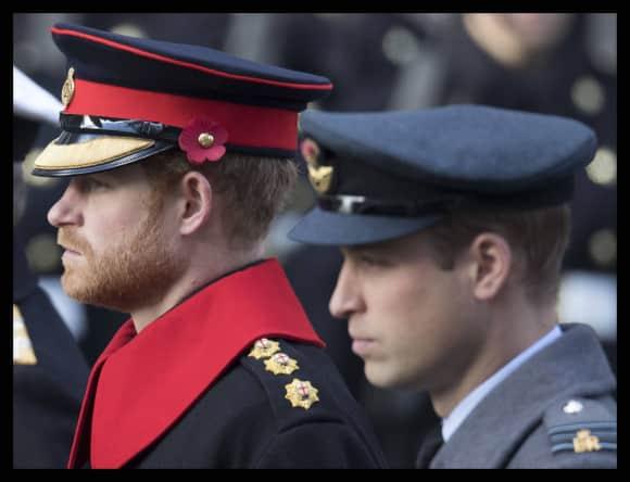 Prinz Harry und Prinz William haben Schuldgefühle gegenüber ihrer Mutter