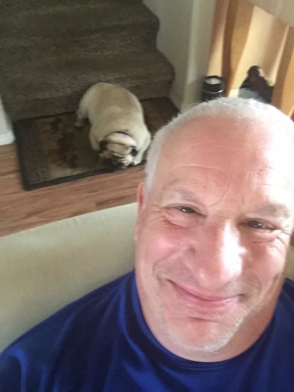 Charles Levin tot Seinfeld Star Hund tot