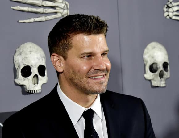 "David Boreanaz alias ""Seeley Booth"" in ""Bones"""